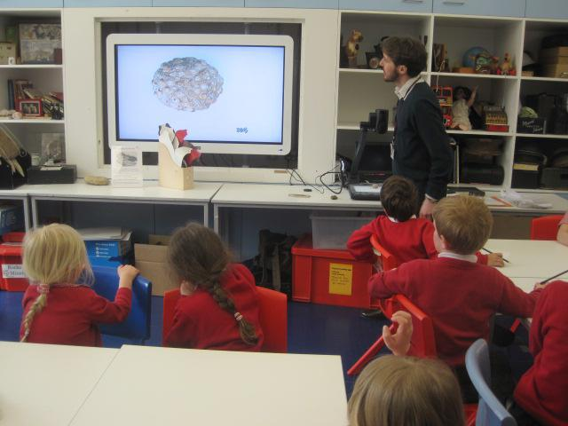 Examining fossils under a microscope