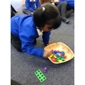 bears and Numicon