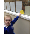 starting our shape hunt