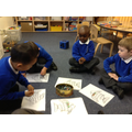 Exploring number with a Rainbow fish maths game