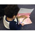 exploring dinosaur stories