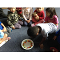 skittles challenge, can you make a rainbow?