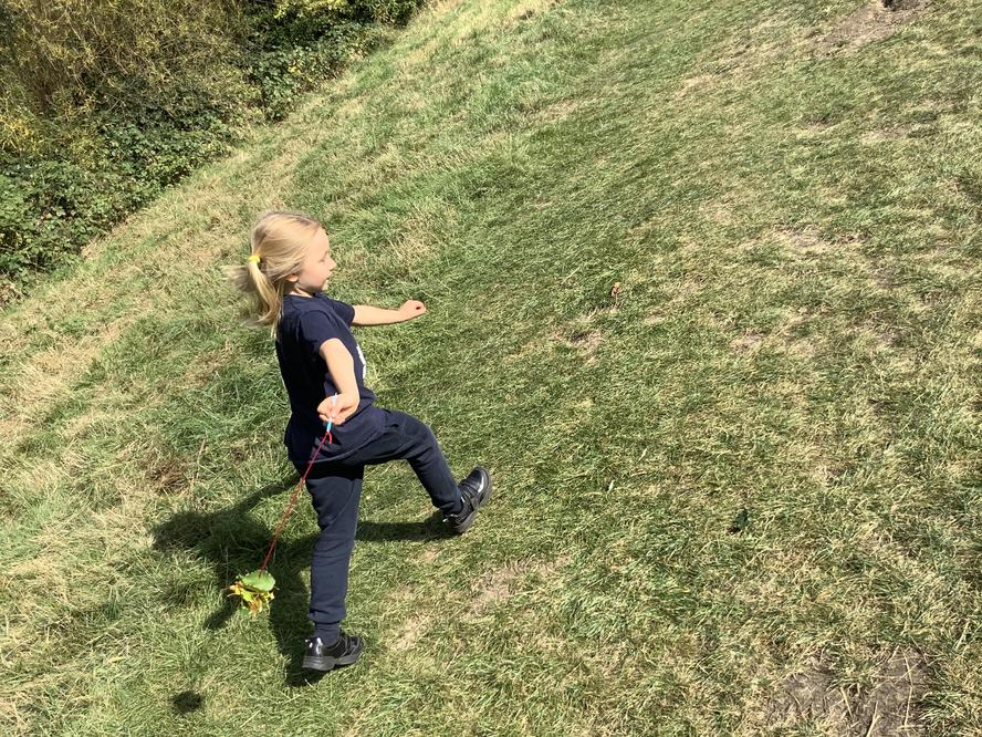 A natural kite