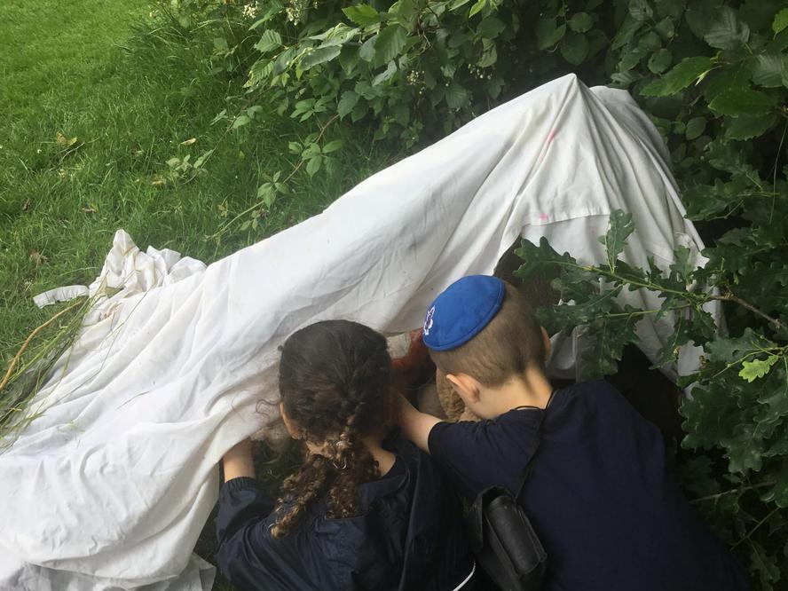 Building a den