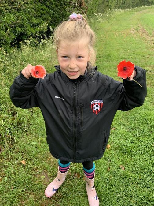 Scarlett found beautiful poppies on her walk!