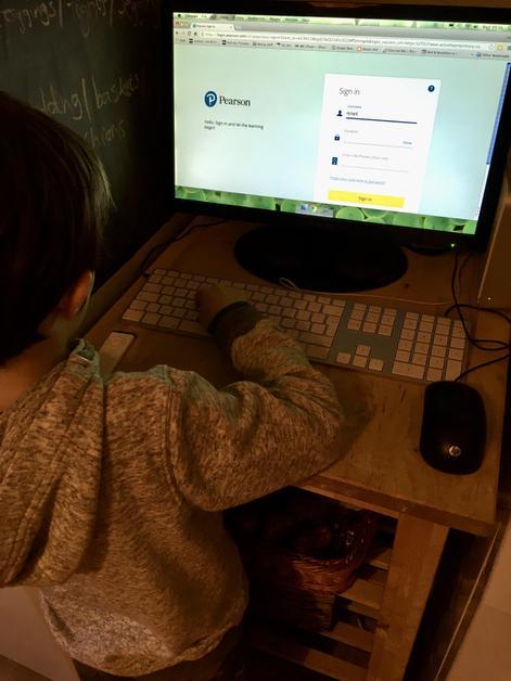 Dylan logging onto Bug Club