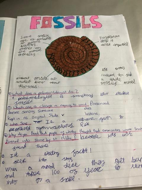 Hermione's Science work about Fossils.