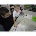 Investigating different beaks