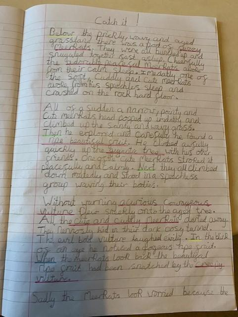 Mia has done an incredible piece of writing