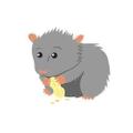 Voici Henri.  Il est un hamster gris.
