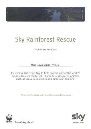 Sponsor an acre of Rainforest