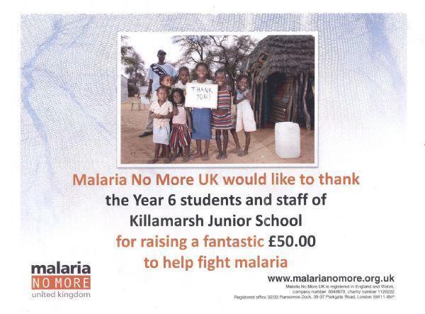 Malaria No More 2013