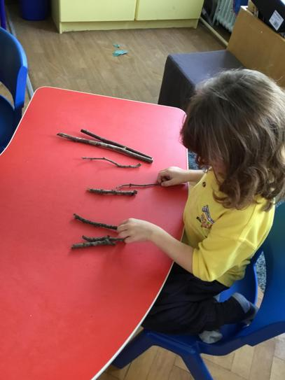 Hollie can order the sticks she found in the playground by size!
