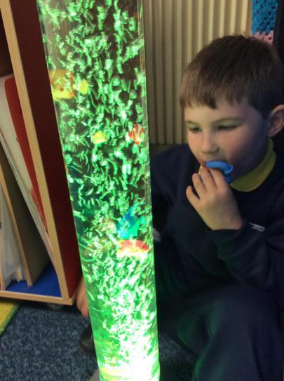 Rory really likes the bubble tube