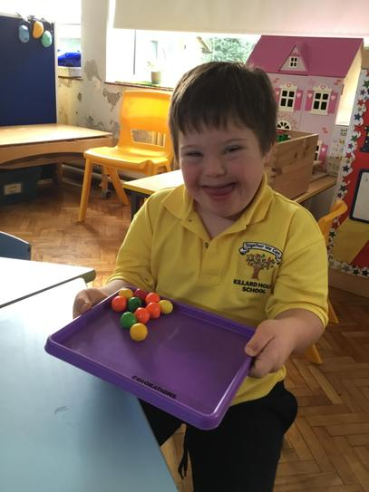 "Harry used the rule ""round"" and ""not round"" when sorting his fruits."