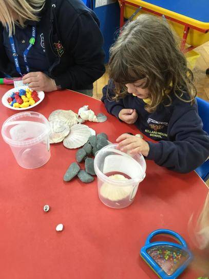 Sorting pebbles and shells is no problem to Hollie!