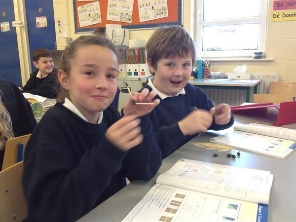Making 3-D shapes with matchsticks and plasticine