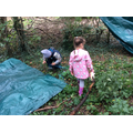 Fun with shelter building