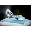 The Mystery of the Glass Slipper!