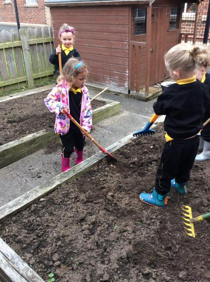 Everybody is helping to rake the flower beds.