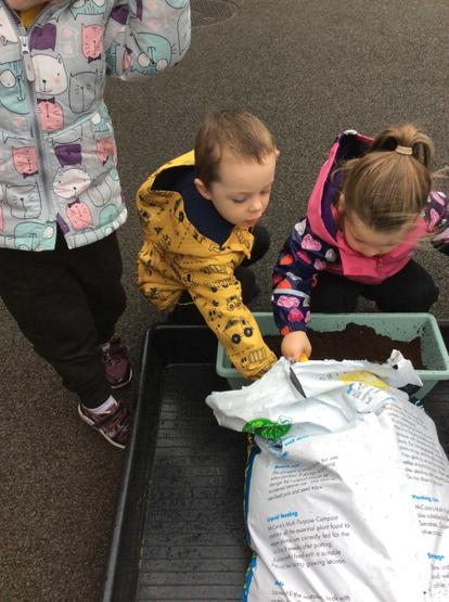 Filling the flower pots with soil.