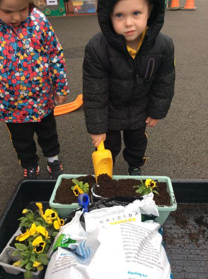 Choosing the plants and placing them into the pots carefully.