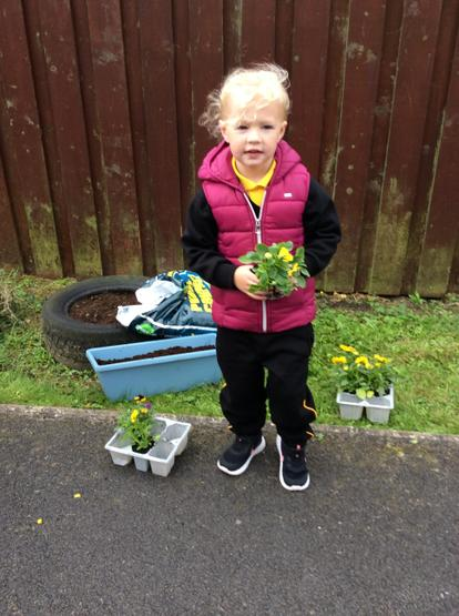 Learning about growing things by planting flowers in the Nursery garden. 