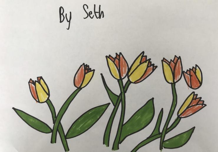 By Seth P5 Gl