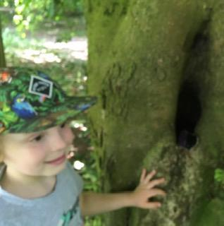 Elijah found a tree nook for his pebble!