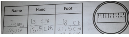 We measured our hands and feet and looked at our similarities and differences.
