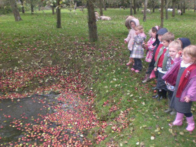 It was fun throwing apples in the pond