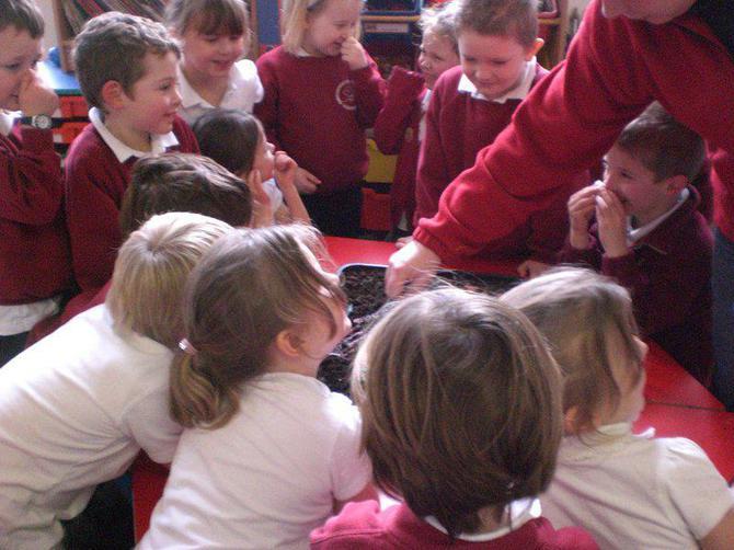 Some children found the vinegar quite smelly!