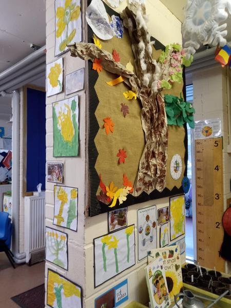 Spring -observational paintings of daffodils
