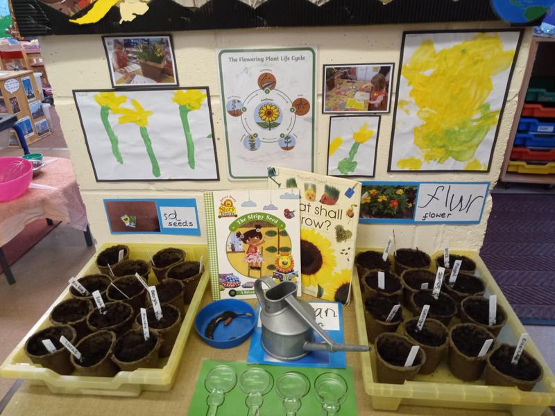 Growing plants for Mother's Day