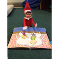 The Elf was reading  book.