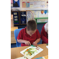 Chopping up the vegetables very carefully.