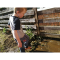 Connor creating a pond in the garden