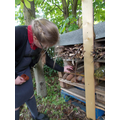 Filling the different areas of our bug hotel.