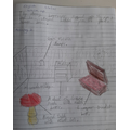 An amazing labelled drawing based on a setting description