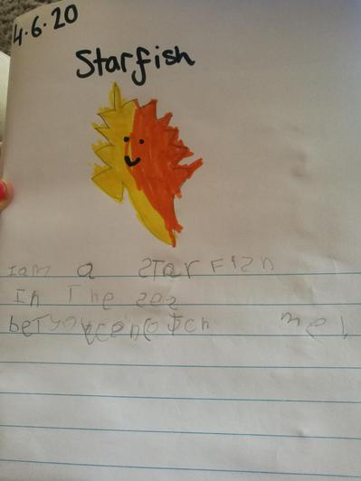 I am a starfish by Noah