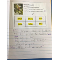 Monday's literacy lesson