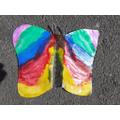 A symmetrical rainbow butterfly.