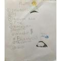 Excellent list of plants