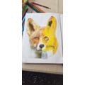 Benjamin's amazing fox - wow!
