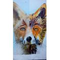 Vilolet's amazing fox- wow!
