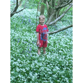 Surrounded by wild garlic