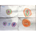 Colourful tree rings