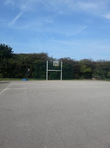 Multi Use Sports Goals at each end of Hardcourt 1