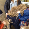 We needed a lot of straw!