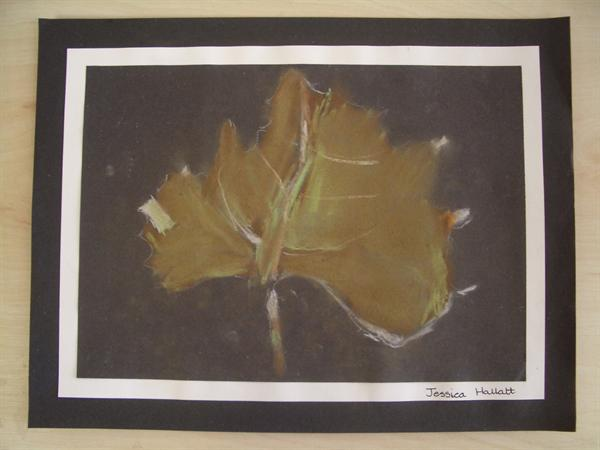 Autumn leaves in pastel